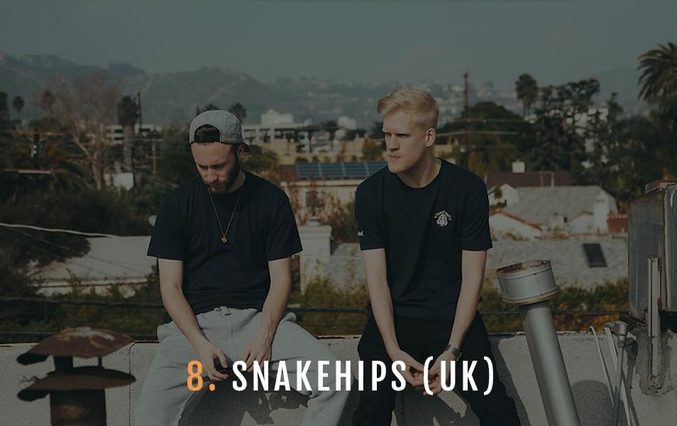 snakehipsunext